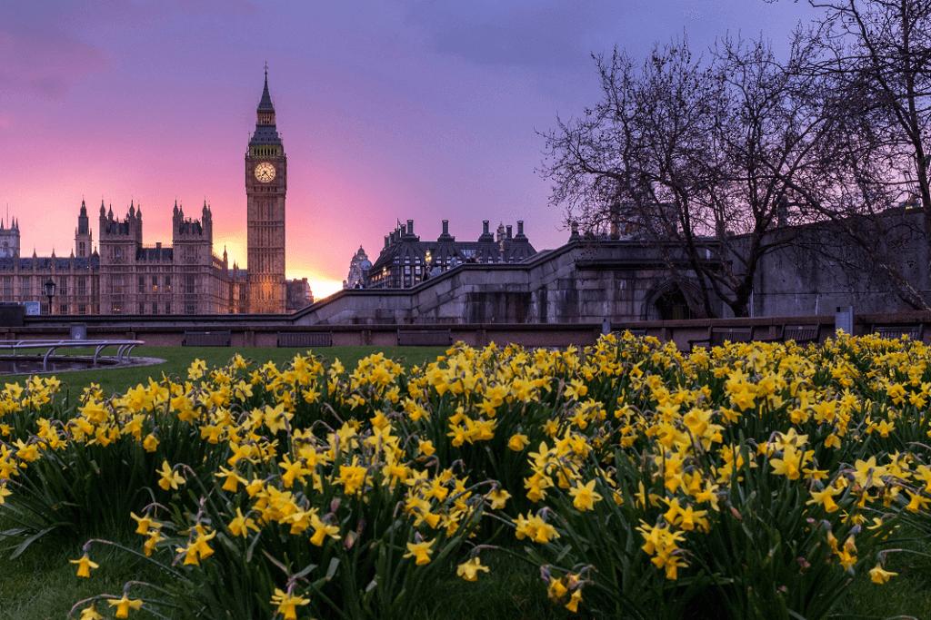 Westminster spring
