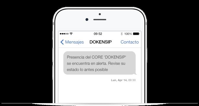 Ejemplo alerta SMS DOKENSIP