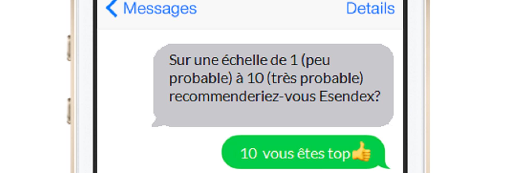 Exemple enquete par SMS