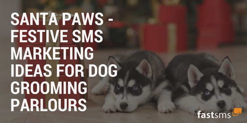 Festive SMS Marketing tips for Dog Grooming Parlours