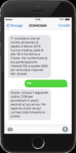 SMS per agenzie di marketing - esempio